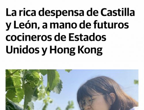 OUR SUMMER PROGRAM SHOWS CASTILLA Y LEON TO THE FUTURE CHEFS