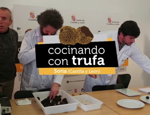 COOKING WITH TRUFFLES 2019 ,    DO NOT MISS IT!!! SORIA, DECEMBER 2 & 3